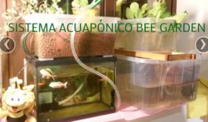 Acuaponía Bee Garden Málaga